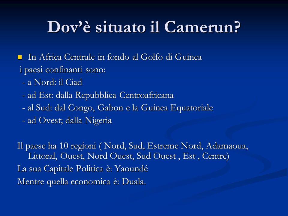 Dovè situato il Camerun? In Africa Centrale in fondo al Golfo di Guinea In Africa Centrale in fondo al Golfo di Guinea i paesi confinanti sono: i paes