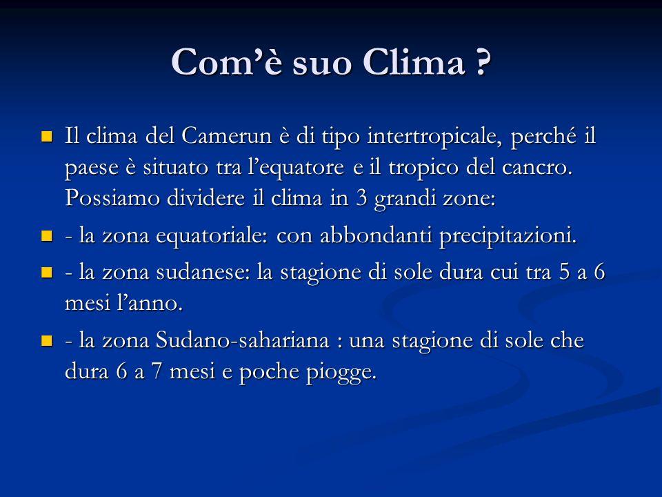 Comè suo Clima ? Il clima del Camerun è di tipo intertropicale, perché il paese è situato tra lequatore e il tropico del cancro. Possiamo dividere il