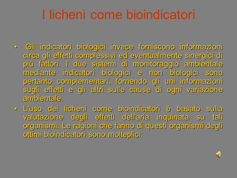 I licheni come bioindicatori Gli indicatori biologici invece forniscono informazioni circa gli effetti complessivi ed eventualmente sinergici di più fattori.