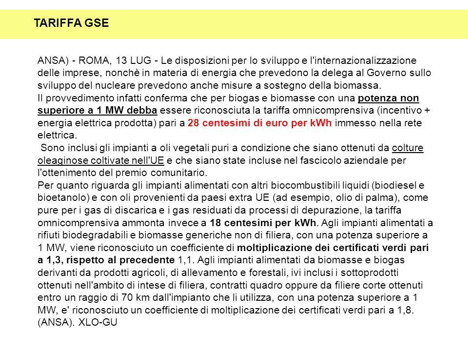 ANSA) - ROMA, 13 LUG - Le disposizioni per lo sviluppo e l'internazionalizzazione delle imprese, nonchè in materia di energia che prevedono la delega