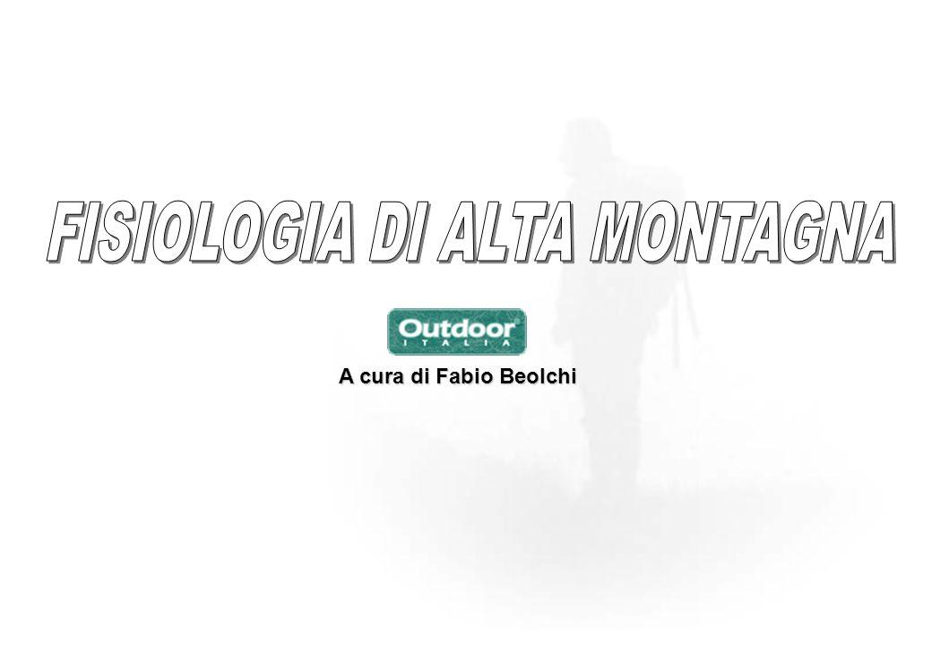 A cura di Fabio Beolchi