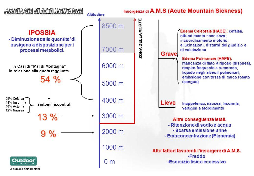 0 m 1000 m 2000 m 3000 m 4000 m 5000 m 6000 m 7000 m 8500 m 54 % % Casi di Mal di Montagna in relazione alla quota raggiunta. Sintomi riscontrati Alti