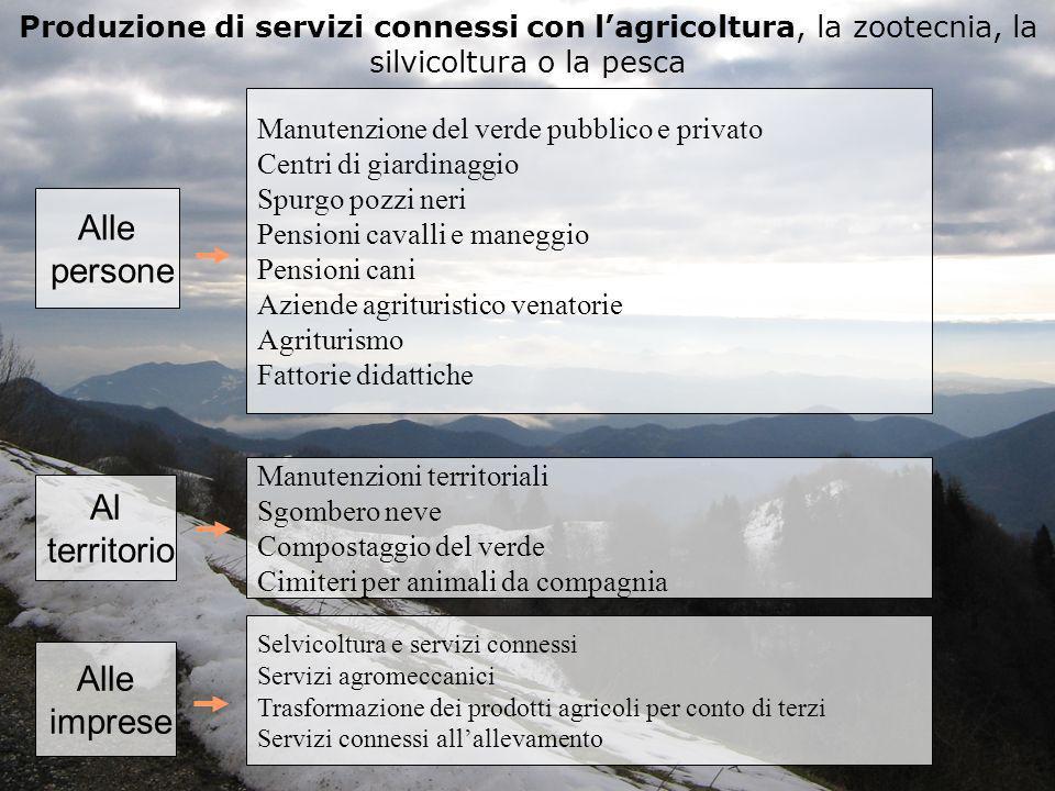 Produzione di servizi connessi con lagricoltura, la zootecnia, la silvicoltura o la pesca Alle persone Manutenzione del verde pubblico e privato Centr