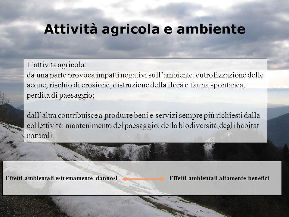 Attività agricola e ambiente Lattività agricola: da una parte provoca impatti negativi sullambiente: eutrofizzazione delle acque, rischio di erosione,
