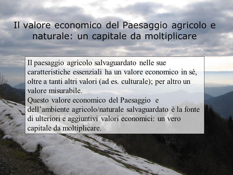 Il valore economico del Paesaggio agricolo e naturale: un capitale da moltiplicare Il paesaggio agricolo salvaguardato nelle sue caratteristiche essen