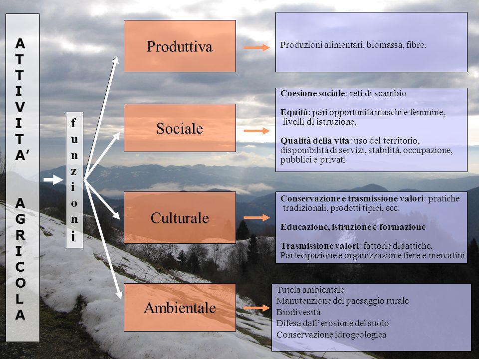 Produttiva Culturale Ambientale funzionifunzioni Coesione sociale: reti di scambio Equità: pari opportunità maschi e femmine, livelli di istruzione, Q