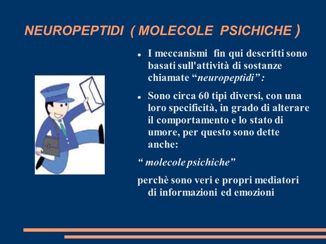 NEUROPEPTIDI ( MOLECOLE PSICHICHE ) I meccanismi fin qui descritti sono basati sull'attività di sostanze chiamate neuropeptidi : Sono circa 60 tipi di