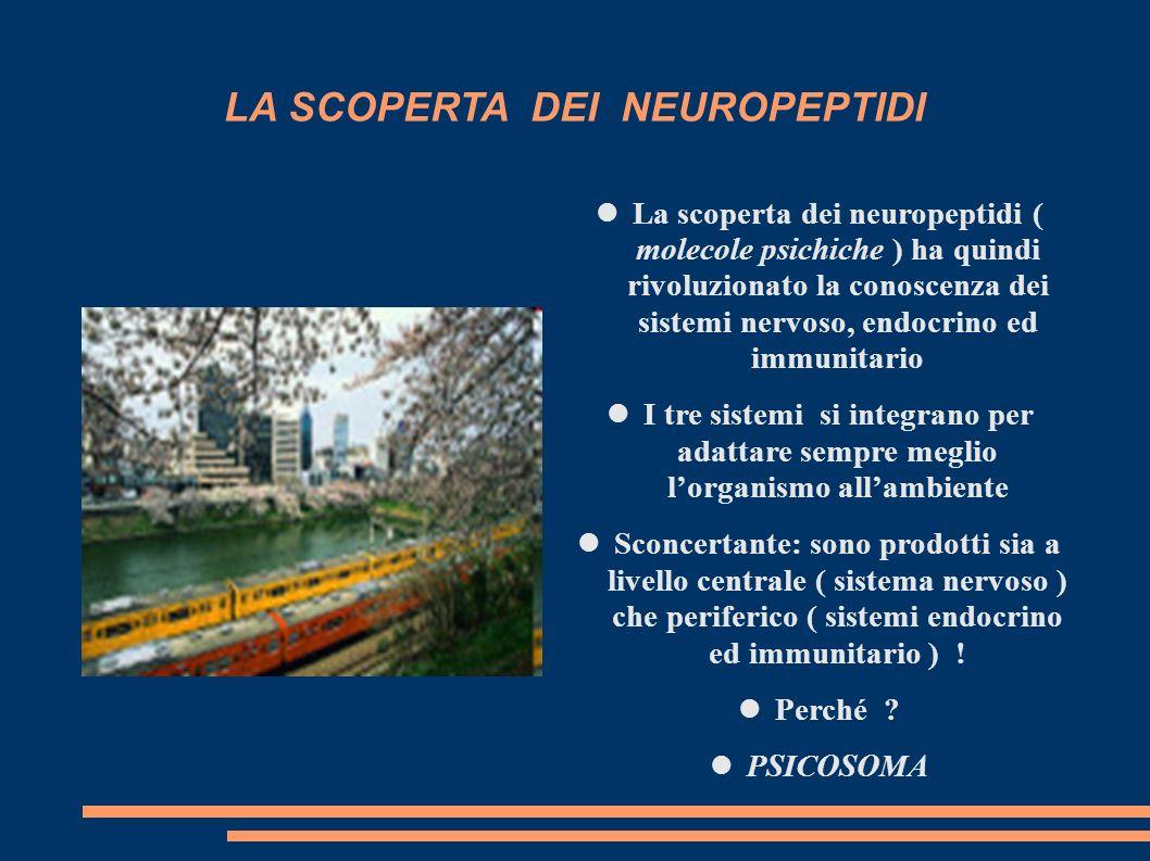 LA SCOPERTA DEI NEUROPEPTIDI La scoperta dei neuropeptidi ( molecole psichiche ) ha quindi rivoluzionato la conoscenza dei sistemi nervoso, endocrino