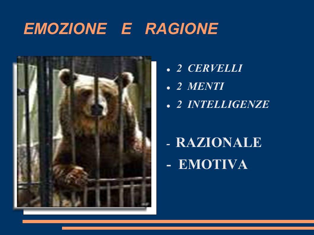 EMOZIONE E RAGIONE 2 CERVELLI 2 MENTI 2 INTELLIGENZE - RAZIONALE - EMOTIVA