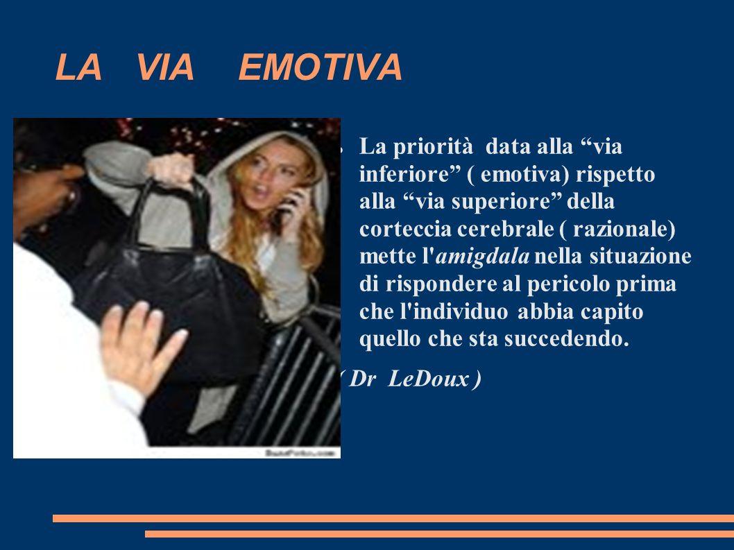 LA VIA EMOTIVA La priorità data alla via inferiore ( emotiva) rispetto alla via superiore della corteccia cerebrale ( razionale) mette l'amigdala nell