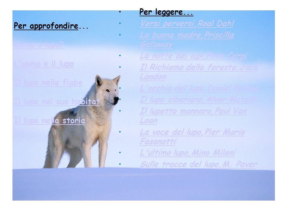 Per approfondire... Uomo o lupo? L'uomo e il lupo Il lupo nelle fiabe Il lupo nel suo habitat Il lupo nella storia Uomo o lupo? L'uomo e il lupo Il lu