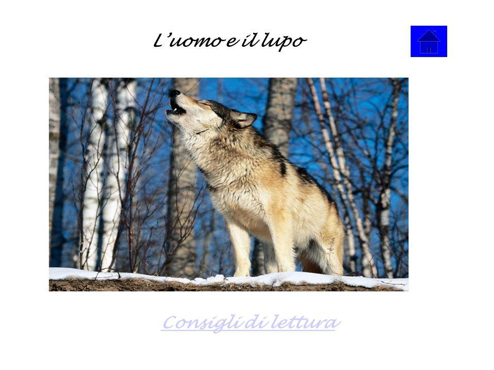 Luomo e il lupo Consigli di lettura