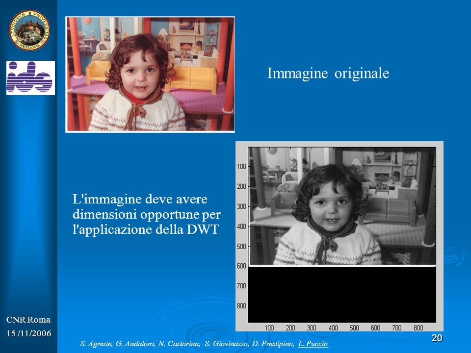 20 CNR Roma 15 /11/2006 Immagine originale L'immagine deve avere dimensioni opportune per l'applicazione della DWT S. Agreste, G. Andaloro, N. Castori