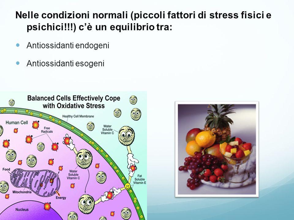 Nelle condizioni normali (piccoli fattori di stress fisici e psichici!!!) cè un equilibrio tra: Antiossidanti endogeni Antiossidanti esogeni