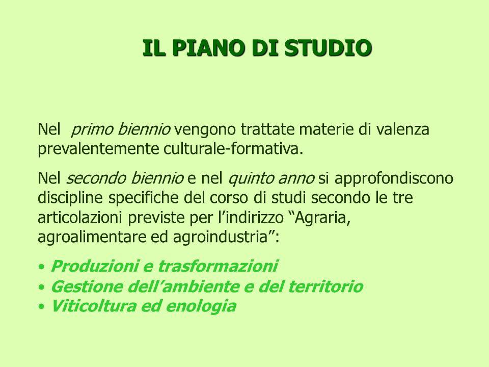 IL PIANO DI STUDIO Nel primo biennio vengono trattate materie di valenza prevalentemente culturale-formativa. Nel secondo biennio e nel quinto anno si