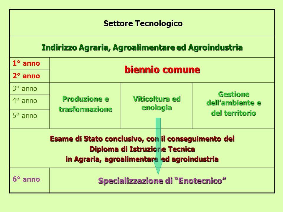 Settore Tecnologico Indirizzo Agraria, Agroalimentare ed Agroindustria 1° anno biennio comune 2° anno 3° anno Produzione e trasformazione Viticoltura
