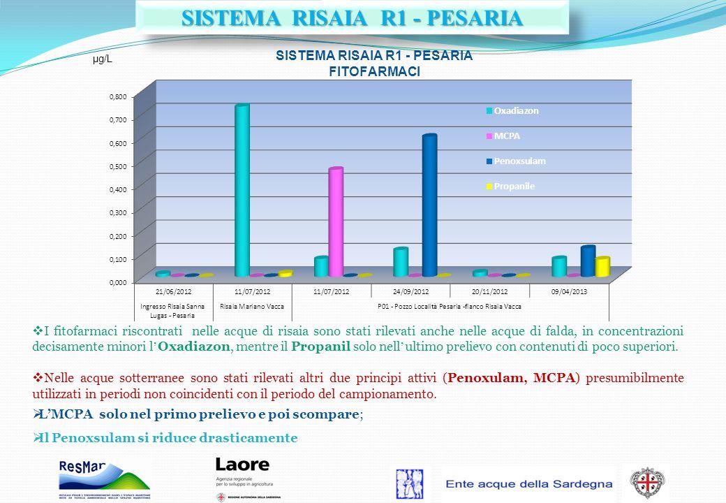 I fitofarmaci riscontrati nelle acque di risaia sono stati rilevati anche nelle acque di falda, in concentrazioni decisamente minori l Oxadiazon, ment