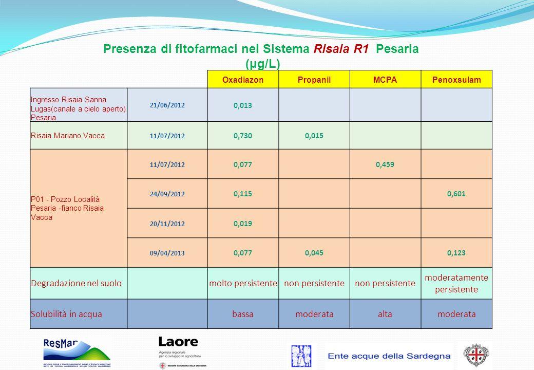 Presenza di fitofarmaci nel Sistema Risaia R1 Pesaria (μg/L) OxadiazonPropanilMCPAPenoxsulam Ingresso Risaia Sanna Lugas(canale a cielo aperto) Pesari