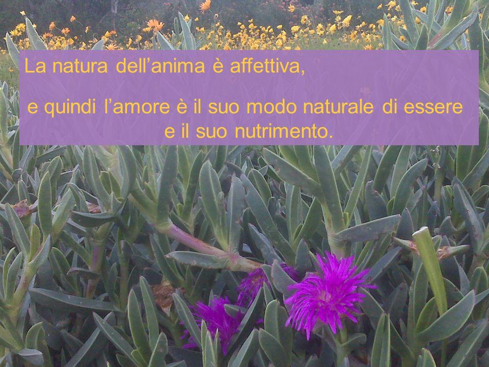 La natura dellanima è affettiva, e quindi lamore è il suo modo naturale di essere e il suo nutrimento.