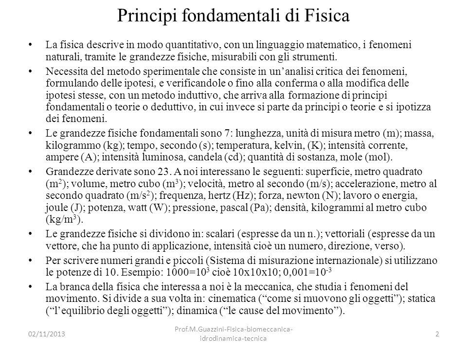 02/11/2013 Prof.M.Guazzini-Fisica-biomeccanica- idrodinamica-tecnica 3