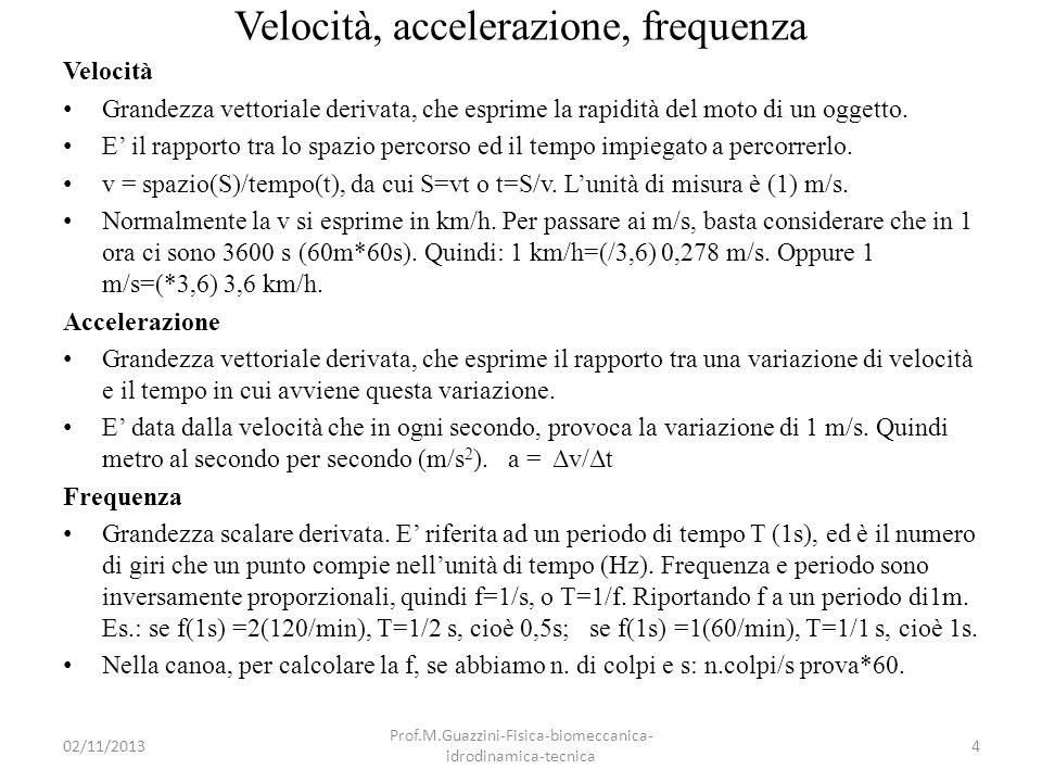 02/11/2013 Prof.M.Guazzini-Fisica-biomeccanica- idrodinamica-tecnica 15 Documento francese 1987-Rapporto forza applicata/velocità canoa (da: Beaudou e coll., 1987)