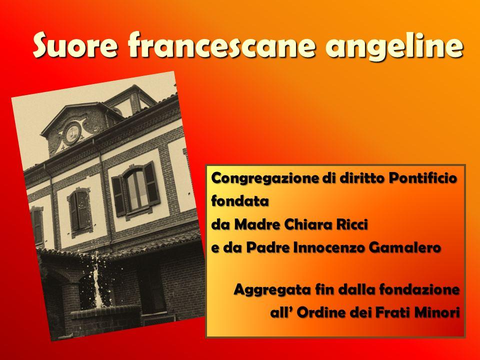 Suore francescane angeline Congregazione di diritto Pontificio fondata da Madre Chiara Ricci e da Padre Innocenzo Gamalero Aggregata fin dalla fondazi
