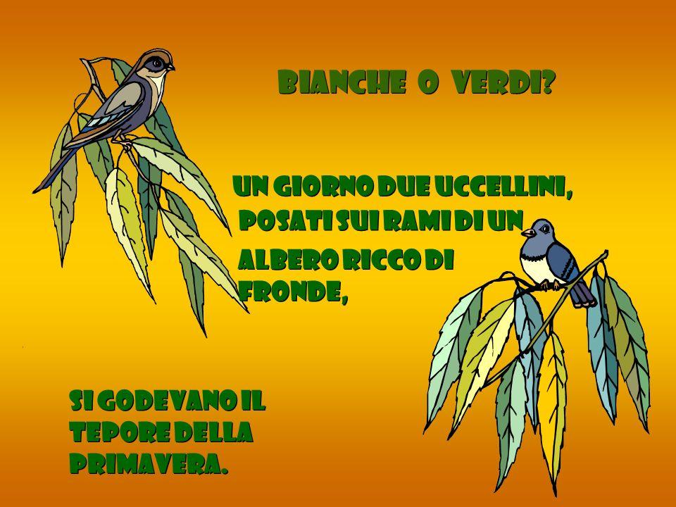 Un giorno due uccellini, posati sui rami di un si godevano il tepore della primavera. BIANCHE O VERDI? albero ricco di fronde,