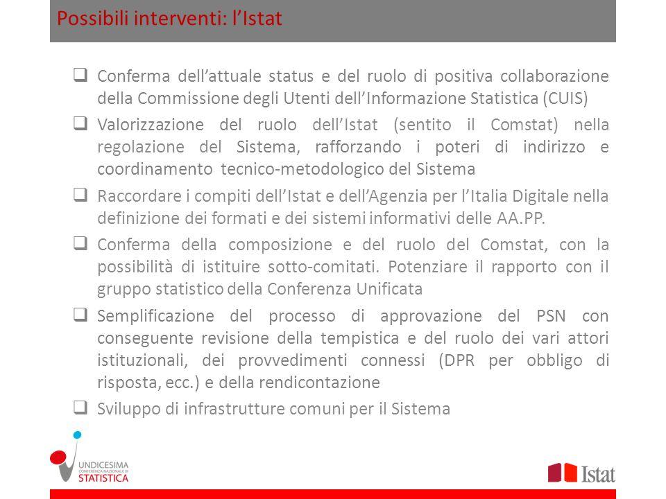 Possibili interventi: lIstat Conferma dellattuale status e del ruolo di positiva collaborazione della Commissione degli Utenti dellInformazione Statis