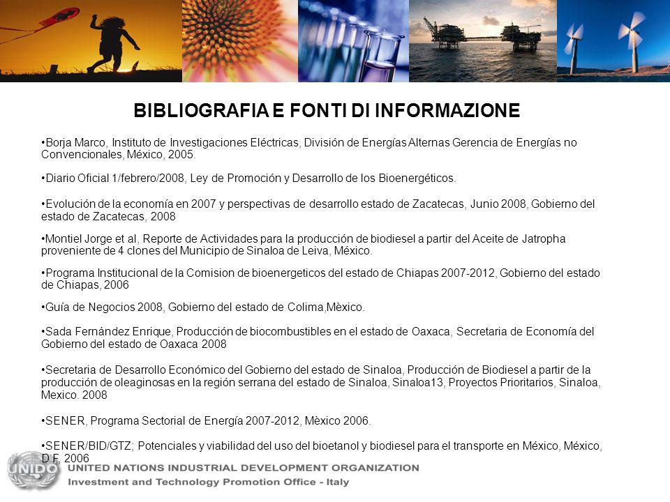 BIBLIOGRAFIA E FONTI DI INFORMAZIONE Borja Marco, Instituto de Investigaciones Eléctricas, División de Energías Alternas Gerencia de Energías no Conve