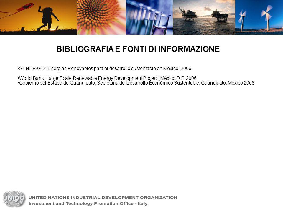 BIBLIOGRAFIA E FONTI DI INFORMAZIONE SENER/GTZ Energías Renovables para el desarrollo sustentable en México, 2006. World Bank Large Scale Renewable En