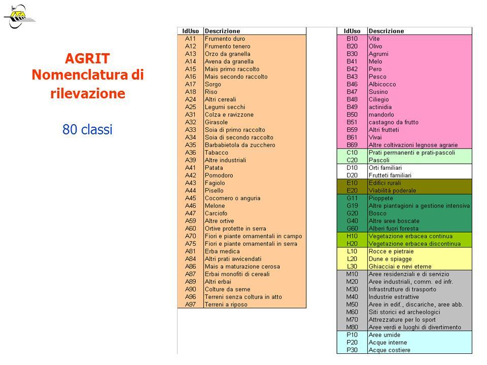 AGRIT Nomenclatura di rilevazione 80 classi