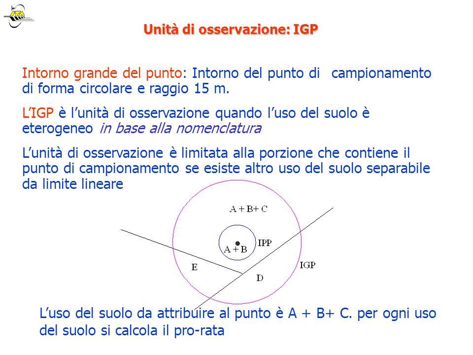 Unità di osservazione: IGP Intorno grande del punto: Intorno del punto di campionamento di forma circolare e raggio 15 m. LIGP è lunità di osservazion