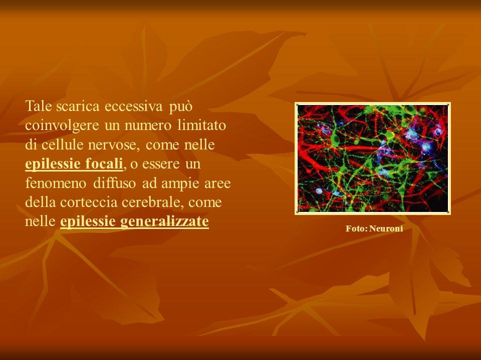 Tale scarica eccessiva può coinvolgere un numero limitato di cellule nervose, come nelle epilessie focali, o essere un fenomeno diffuso ad ampie aree