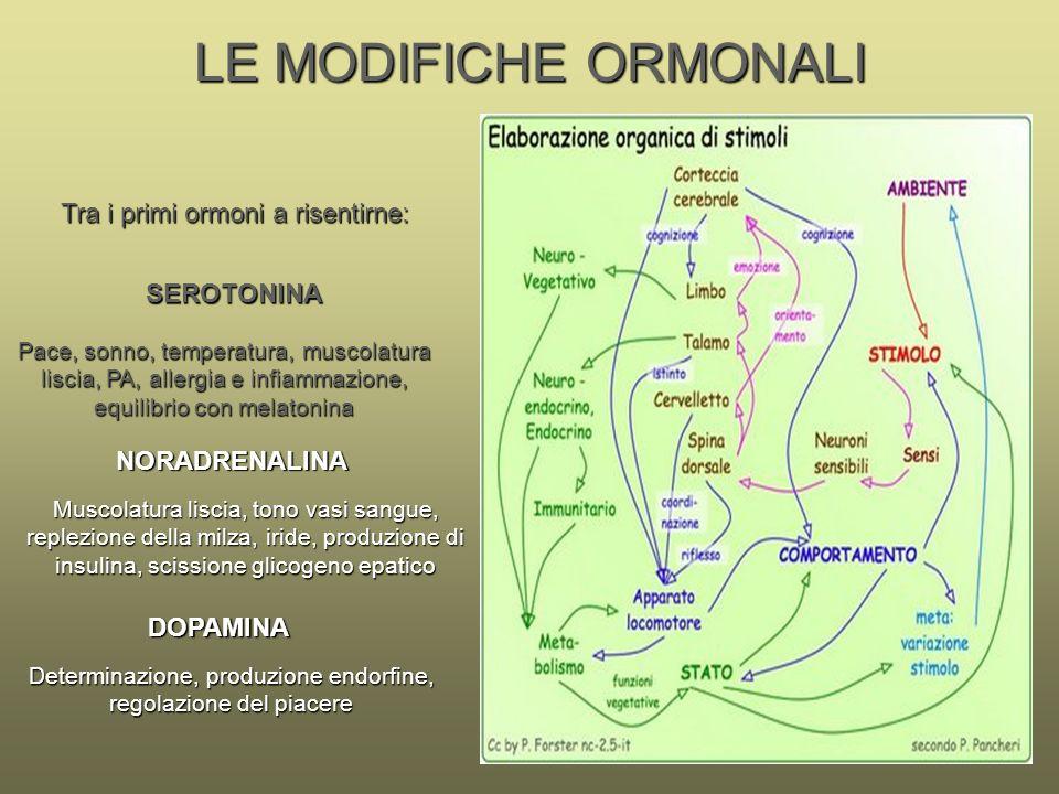 LE MODIFICHE ORMONALI Muscolatura liscia, tono vasi sangue, replezione della milza, iride, produzione di insulina, scissione glicogeno epatico SEROTON