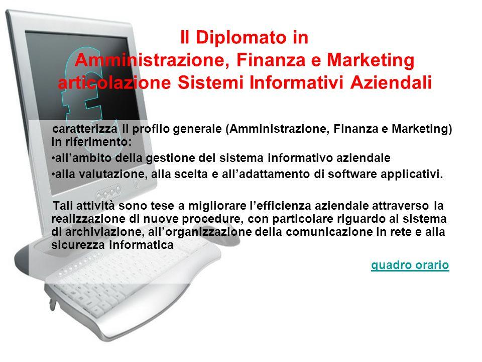 Il Diplomato in Amministrazione, Finanza e Marketing articolazione Sistemi Informativi Aziendali caratterizza il profilo generale (Amministrazione, Fi