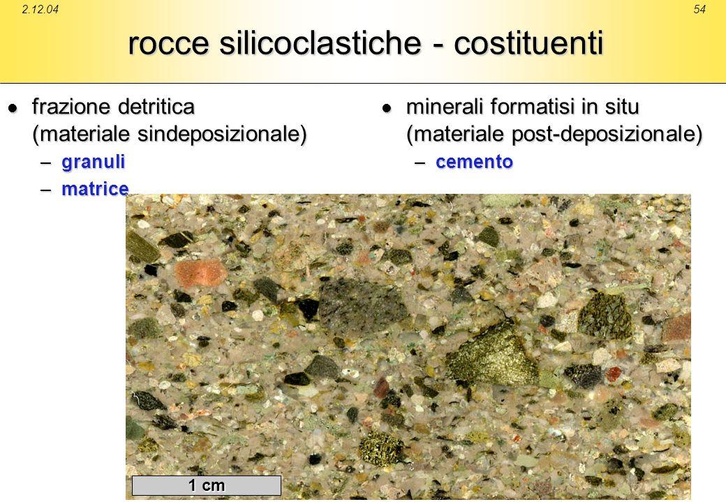 2.12.0454 rocce silicoclastiche - costituenti frazione detritica (materiale sindeposizionale) frazione detritica (materiale sindeposizionale) –granuli