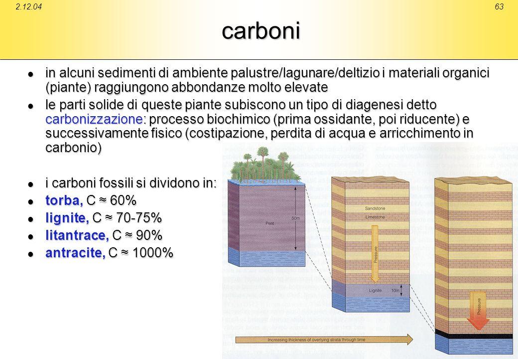 2.12.0463carboni in alcuni sedimenti di ambiente palustre/lagunare/deltizio i materiali organici (piante) raggiungono abbondanze molto elevate in alcu