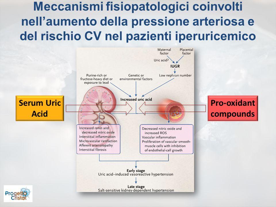 Meccanismi fisiopatologici coinvolti nellaumento della pressione arteriosa e del rischio CV nel pazienti iperuricemico Serum Uric Acid Pro-oxidant com