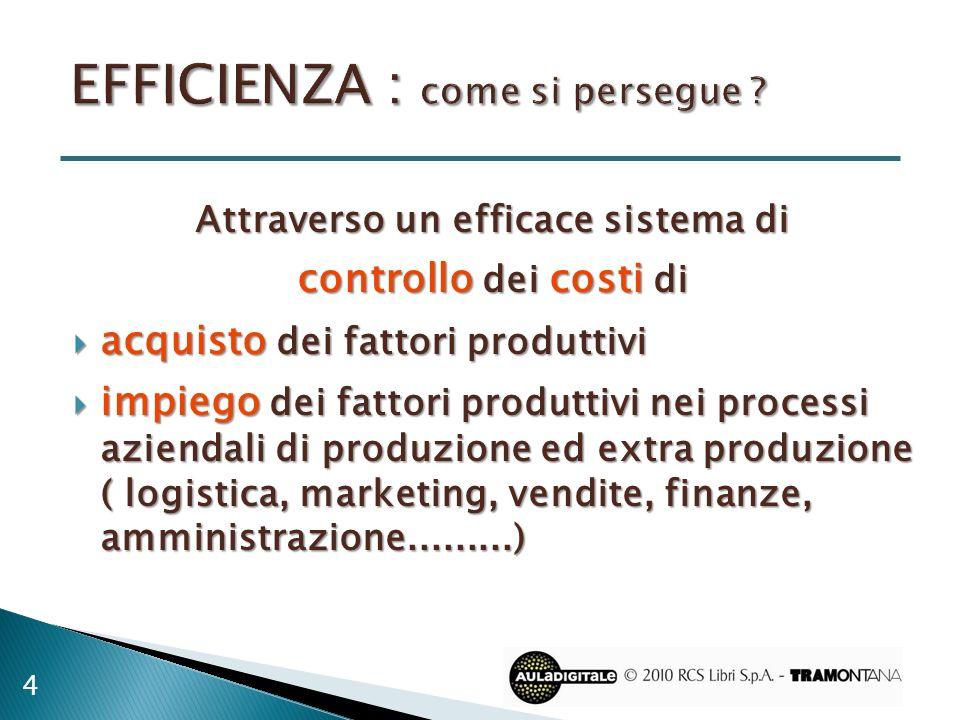 Attraverso un efficace sistema di controllo dei costi di acquisto dei fattori produttivi acquisto dei fattori produttivi impiego dei fattori produttiv
