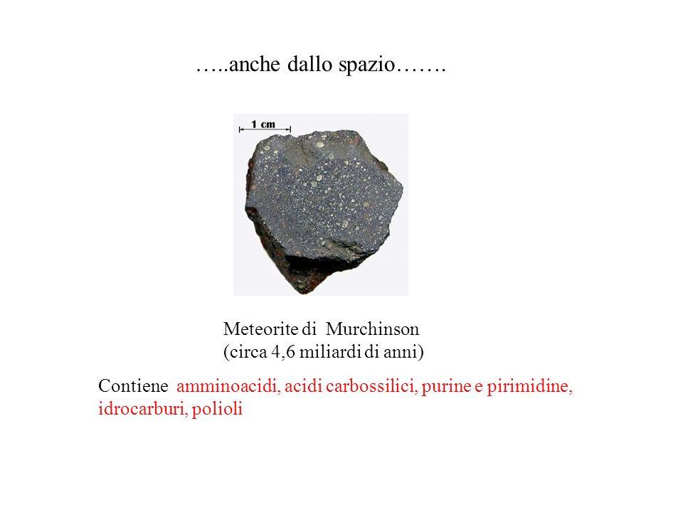 …..anche dallo spazio……. Meteorite di Murchinson (circa 4,6 miliardi di anni) Contiene amminoacidi, acidi carbossilici, purine e pirimidine, idrocarbu