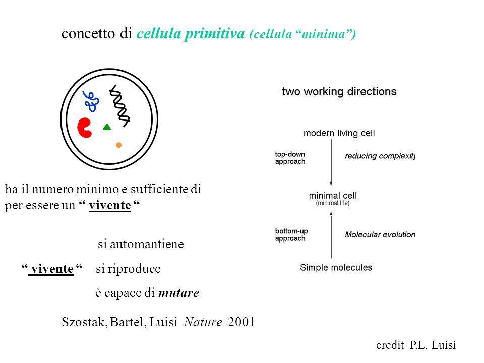 concetto di cellula primitiva (cellula minima) ha il numero minimo e sufficiente di componenti per essere un vivente si automantiene vivente si riprod