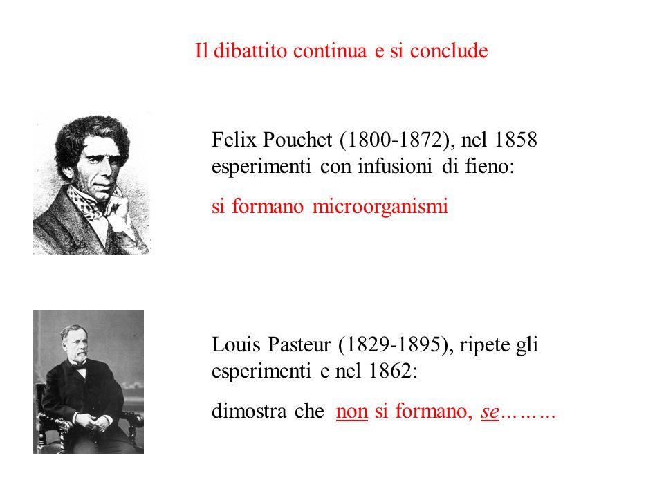 Il dibattito continua e si conclude Felix Pouchet (1800-1872), nel 1858 esperimenti con infusioni di fieno: si formano microorganismi Louis Pasteur (1