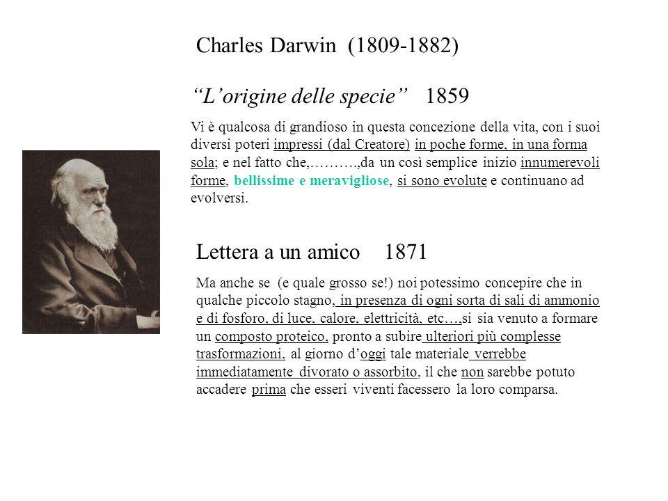 Lorigine delle specie 1859 Vi è qualcosa di grandioso in questa concezione della vita, con i suoi diversi poteri impressi (dal Creatore) in poche form