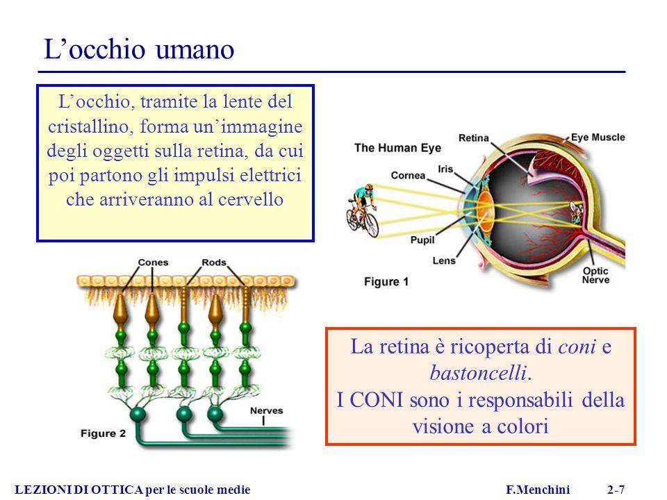 Locchio umano LEZIONI DI OTTICA per le scuole medie F.Menchini 2-7 Locchio, tramite la lente del cristallino, forma unimmagine degli oggetti sulla ret