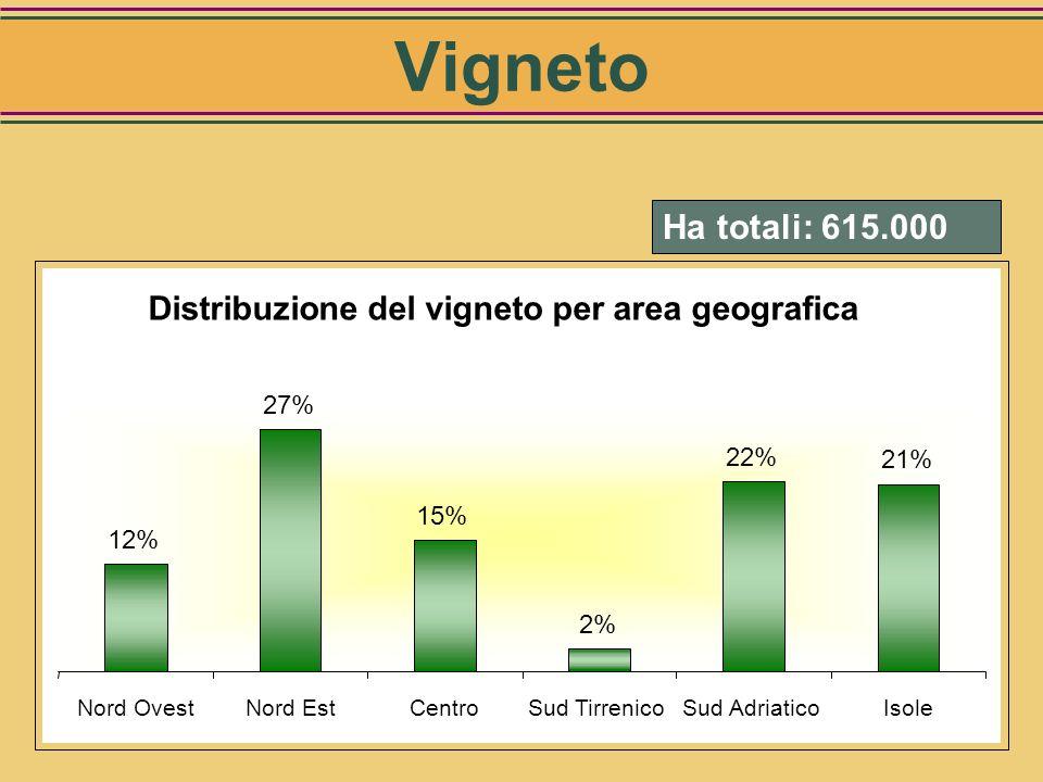 Distribuzione del vigneto per classi di dimensione 12% 19% 26% 17% 13% 8% 6% < 1 ha1-2 ha2-5 ha5-10 ha10-20 ha20-50 ha> 50 ha Vigneto