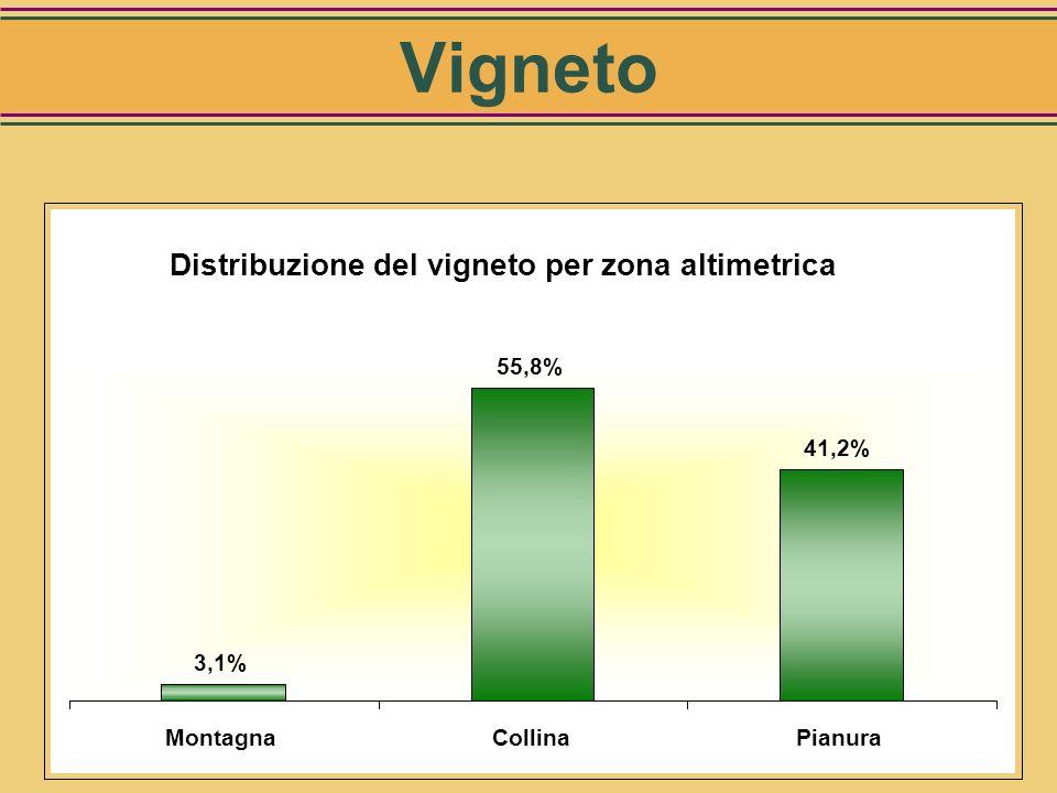 Ha totali: 615.000 Distribuzione del vigneto per area geografica 12% 27% 15% 2% 22% 21% Nord OvestNord EstCentroSud TirrenicoSud AdriaticoIsole Vignet