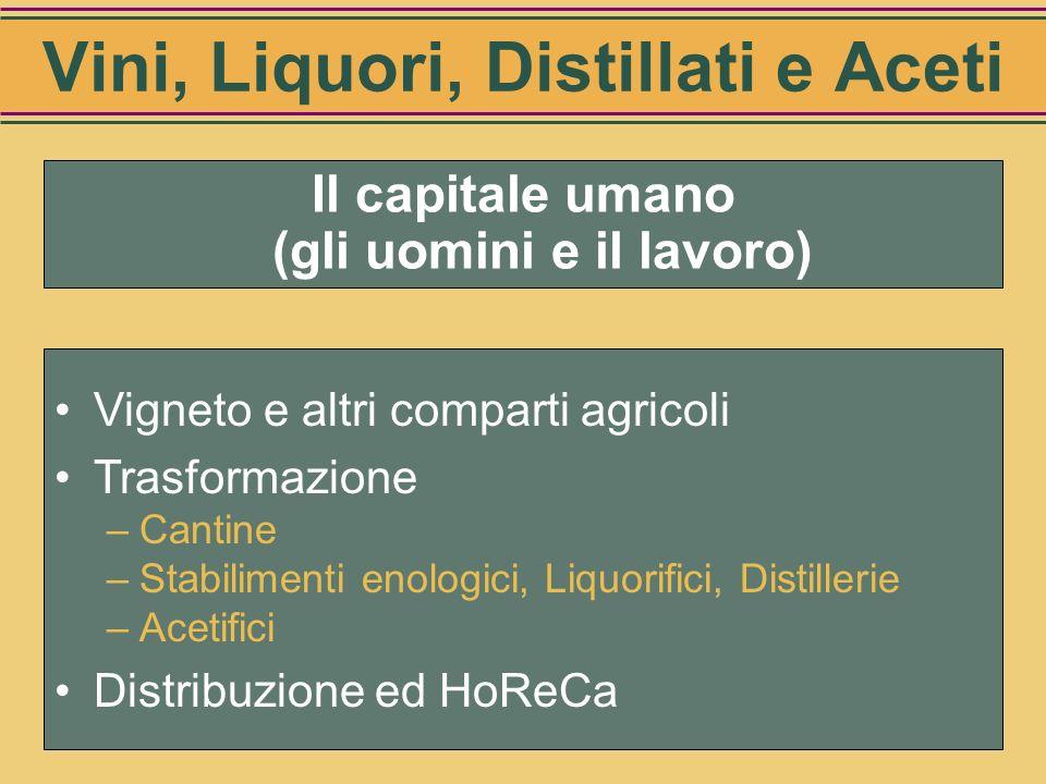 Riepilogo Investimenti per la trasformazione (mio di Euro) Cantine19.800 Stabilimenti enologici2.763 Liquorifici e distillerie2.456 Acetifici321 Total