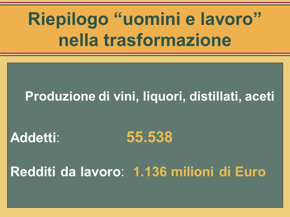 Addetti alla produzione di aceto Categorie Numero Produzione di aceto di vino 123 Produzione di aceto balsamico di Modena 290 Totale 413 Fonte: Stime