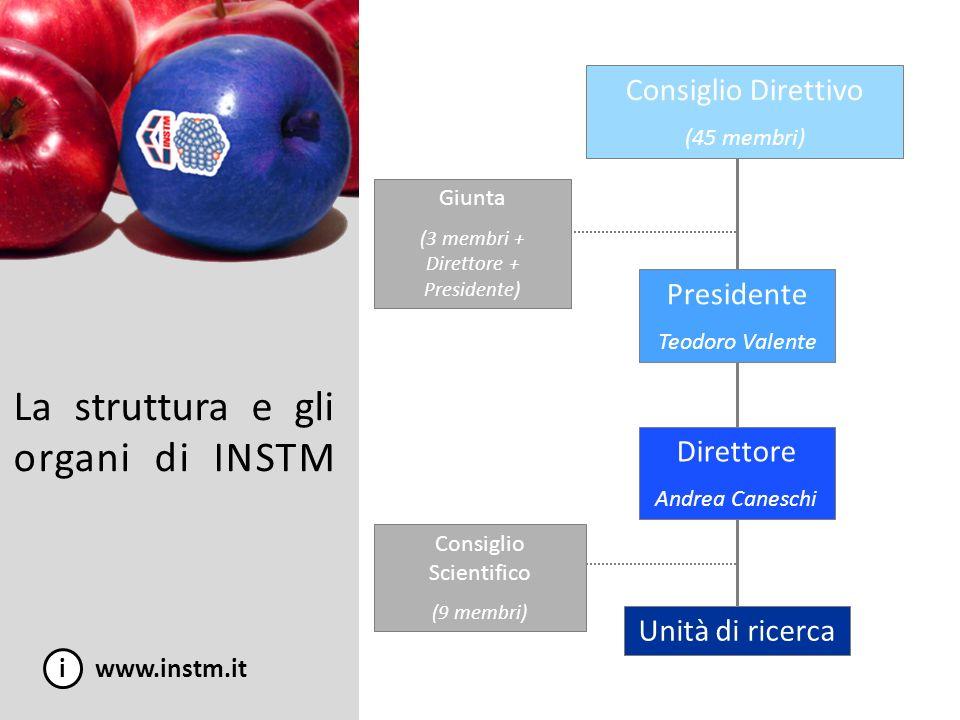 La struttura e gli organi di INSTM i www.instm.it Consiglio Direttivo (45 membri) Consiglio Scientifico (9 membri) Unità di ricerca Presidente Teodoro