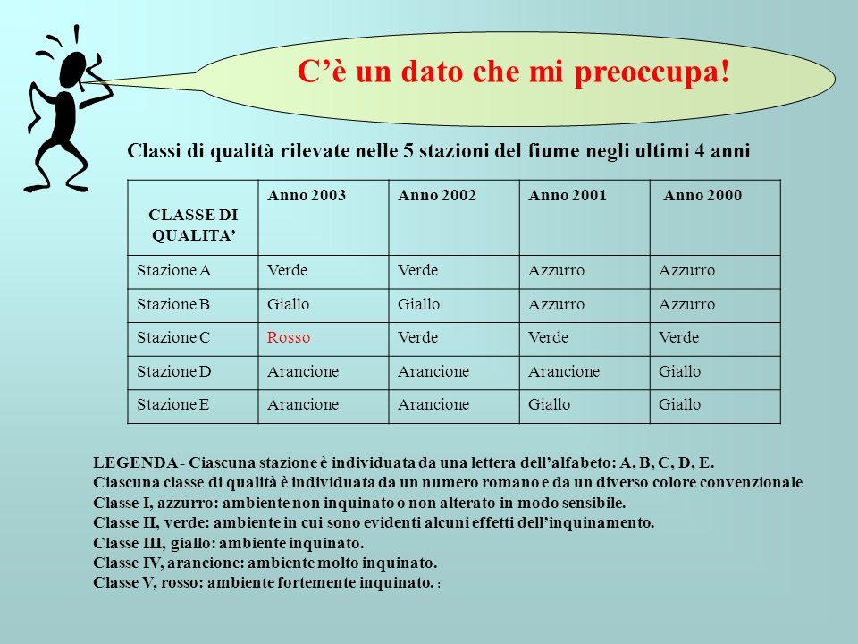 Classi di qualità rilevate nelle 5 stazioni del fiume negli ultimi 4 anni CLASSE DI QUALITA Anno 2003Anno 2002Anno 2001 Anno 2000 Stazione AVerde Azzu